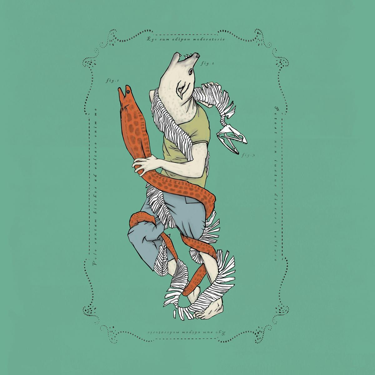portfolio-music-FC-feat