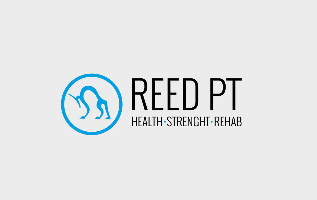 WB-portfolio-design-ReedPT-concept-5