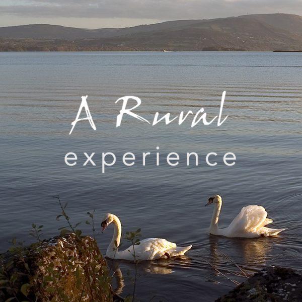 WB-portfolio-web-design-A-Rural-ExperienceV2-Featured